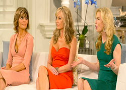 Real Housewives Reunion 3